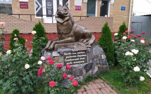 Тамбовский волк. Пямятник тамбовскому волку