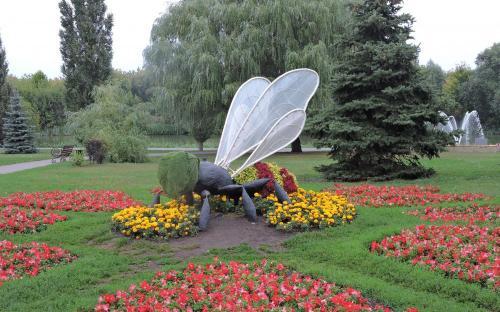 Тамбов. Пчела.  Артобъект на набережной р.Цна